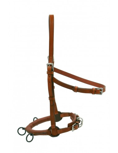 Cavesson Marjoman brown with bosal...